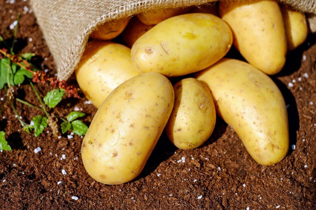 Patate, pomme de terre dans sac