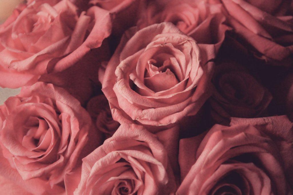 Bouquet de roses poudrée