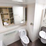 salled de bain avec grand miroir et toilette